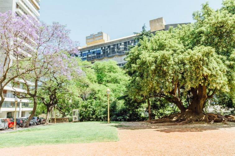 Biblioteca Nacional Mariano Moreno | Buenos Aires light – Der perfekte Spaziergang zum Einstieg, Stilnomaden