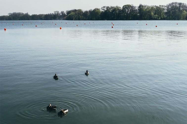 Maschsee | 25h in Hannover, Stilnomaden